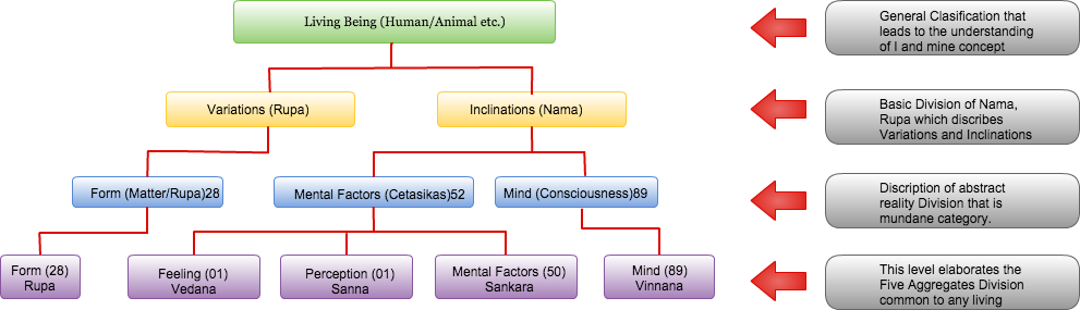 Flow Chart of living being